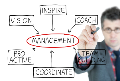 how-to-manage-a-sales-manager
